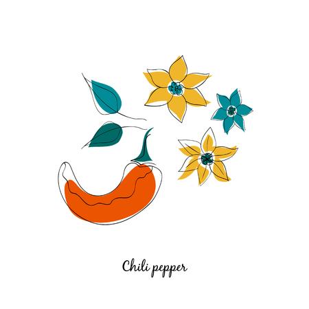 capsicum plant: Chilli pepper vector illustration in cartoon style