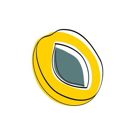 Vector illustration Yellow half apricot with seed