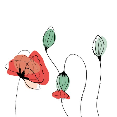 poppy field: Poppy field vector line art illustration in scandinavian style Illustration