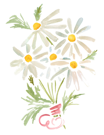 Watercolor illustration. Bouquet of daisies with a pink ribbon. Path included