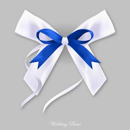 Gift blue white silk bow, isolated object