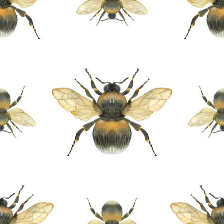 Summer meadow bumblebee watercolor vector seamless pattern