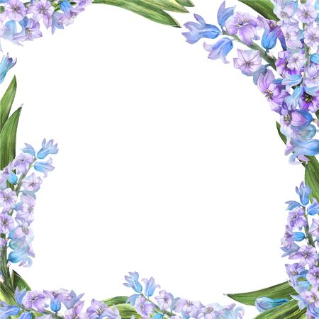 Hyachinth watercolor spring floral frame on a white background, traced