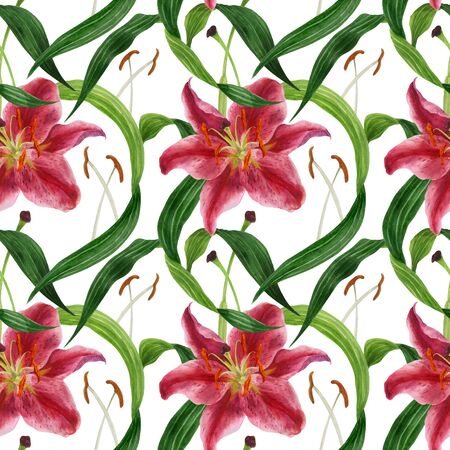 Tropical lily traced watercolor seamless pattern