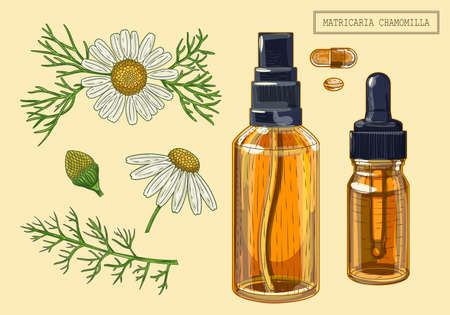 Medical chamomille flowers and dropper and sprayer, hand drawn illustration in a retro style Ilustración de vector