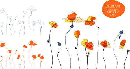 Yellow poppies field line art illustration in the scandinavian style Vettoriali