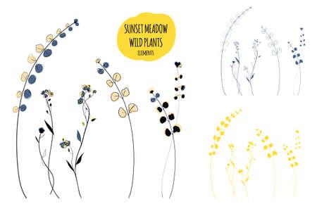 Wild plants line art illustration in the scandinavian style Vettoriali