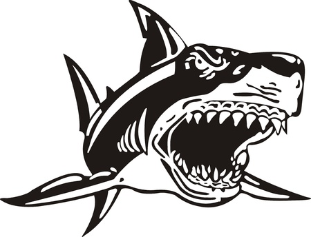 attacks: Shark Illustration