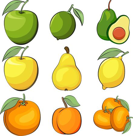 Set of vector apple, lime and avocado. Vector lemon and pear. Apricot and orange vector illustration. Set of vector fruits. Vegetarian menu.
