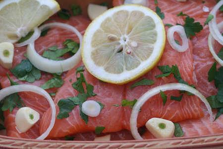 coalfish: salmon