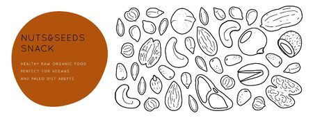 Nuts and seeds  line silhouettes. Vector background horizontal template with place for text. Flyer, booklet advertising and design. Archivio Fotografico - 135884203