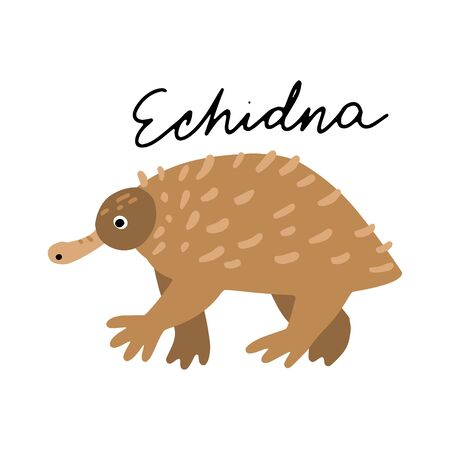 Australian Animal Echidna vector illustration clipart. Kids design poster. Wild mammal drawing in scandinavian style. Handwritten lettering. Exotic wildlife.