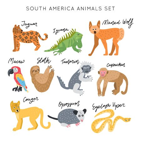South America Animal vector illustration clipart set. Kids design posters bundle. Wild mammal drawing in scandinavian style. Handwritten lettering. Exotic wildlife.