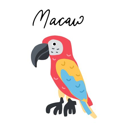 South America Macaw Parrot vector illustration clipart. Kids design poster. Wild bird  drawing in scandinavian style. Handwritten lettering. Exotic wildlife.