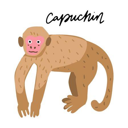 South America Capuchin monkey vector illustration clipart. Kids design poster. Wild mammal drawing in scandinavian style. Handwritten lettering. Exotic animal wildlife.