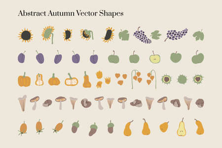 Vector abstract Autumn harvest organic elements and shapes in Boho style. Good for wall decoration, postcard or brochure cover design. Minimalist Mid century modern Fall.