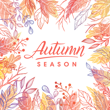 autumn background: Autumn season.Hand drawn lettering with leaves in fall colors.Seasons greetings card perfect for prints, flyers, banners,invitations, special offer and more.Vector autumn illustration. Illustration