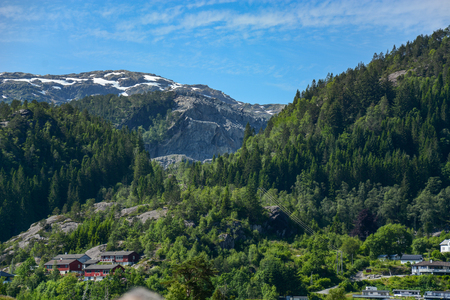 hillside: Houses among the trees on the hillside. Norway Stock Photo