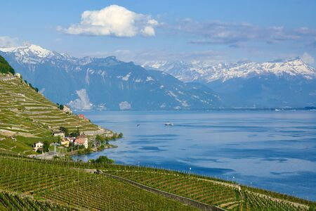 Lavaux, Vineyard Terraces  and magnificent landscapes of Lake Geneva. Snowy peaks of the Alps mountains. French Switzerland, Lausanne, Canton Vaud. Summer 2019. Standard-Bild