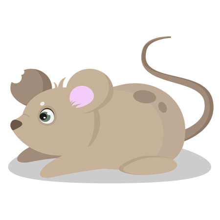 Cute mouse with a torn ear; vector illustration.