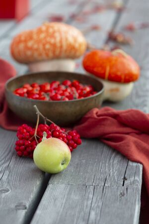 Apple on the old wooden background with pumpkins, rowanberry, red fabric, leaves and bowl with rosehip. Autumn arrangement of fall harvest. Selective focus, vertical.