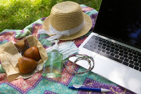 Laptop, face mask and hand alcohol gel sanitizer on blanket on a green grass lawn in the park or garden. Smart working from city park in a bright sunshine summer day.