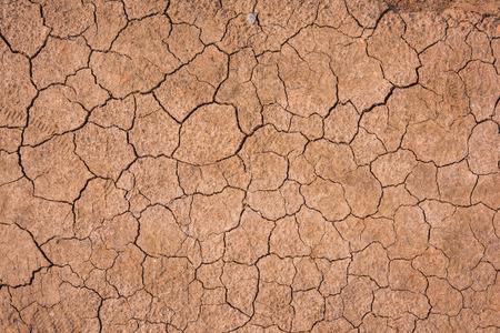 Tierra seca con el fondo agrietado.