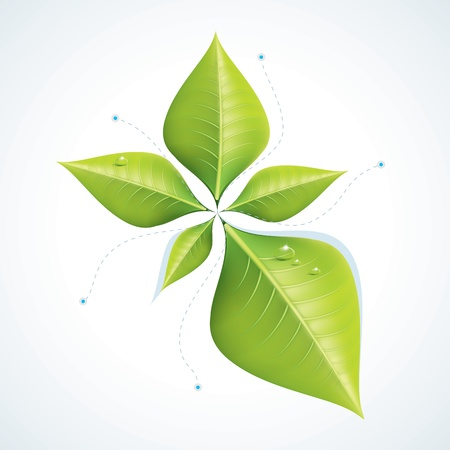 environmental analysis: Green economy concept - Leafs inforgaphics  Illustration