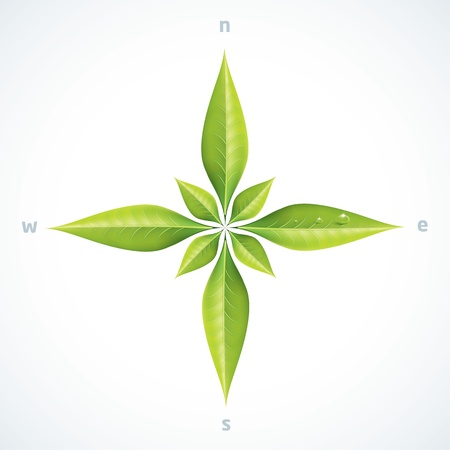 wind rose: Eco green leafs compass rose