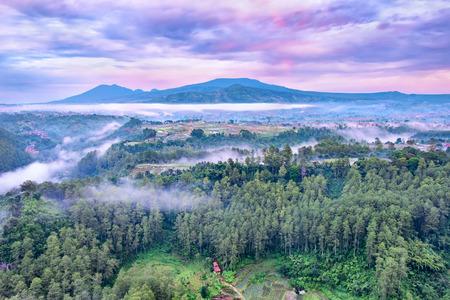 森とインドネシア、日の出では、キャプチャ美しい紫の空とケラトン崖、バンドン、インドネシア西ジャワ州にある松の木の行を示す色の空撮 写真素材