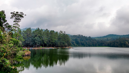 Trees in the side of big lake, this lake called situ patengan, located in Bandung, West Java, Indonesia Stock Photo