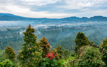Forest view from Uphill - at sunrise and foggy weather, captured from Keraton Cliff, Bandung, West Java, Indonesia