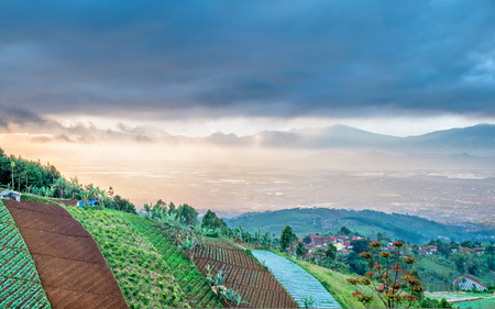 Plantation area on top of the hill and scenery of city when illuminated by sunlight but washed by rain in faraway, captured  from Moko Hills when weather is cloudy, Bandung, Indonesia Stock Photo