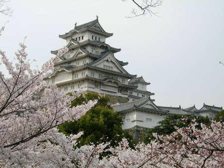 osaka: Himeji Castle near Kobe, Japan, with Cherry Blossoms