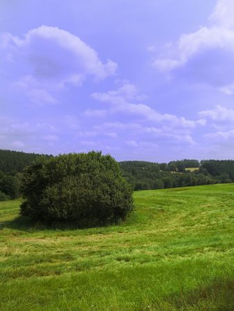 Very nice landscape with fields, meadows and forest Stock Photo - 5343673