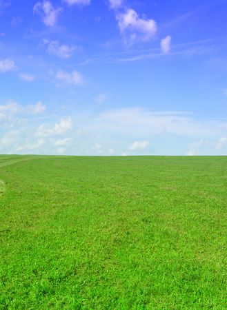 very nice image - green field and blue sky       Stock Photo - 5357871