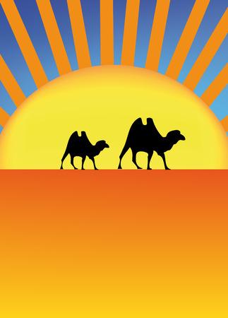 desert sunset: nice illustration of sahara with camel and sun