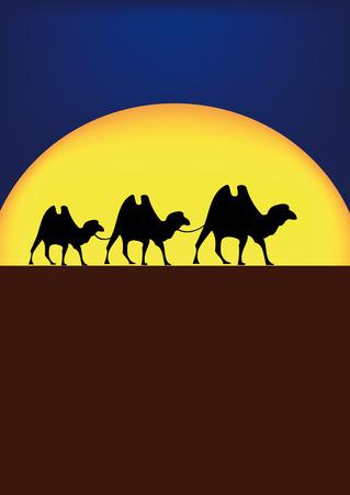 nice illustration of camels on desert in night Vector