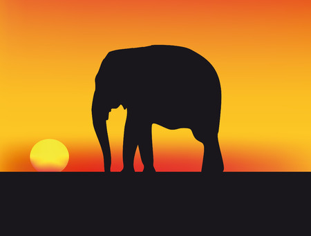 nice illustration of sunset in Africa with red sky and elephant Vector