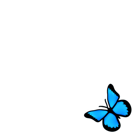 small insect: nice blue butterfly isolated on white  background