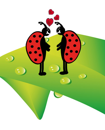 two ladybugs in love standing on plant with waterdrops Stock Vector - 6169561