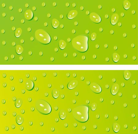 beautiful decoration water drops on green background photo