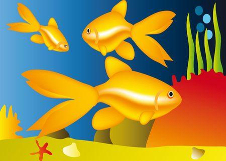 life under water - nice aquarium with golden fish Stock Photo - 6394520