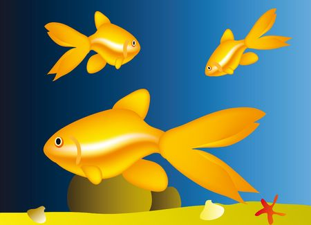 life under water - nice aquarium with golden fish Stock Photo - 6394519