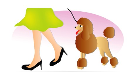 poodle: nice illustration of woman and brown poodle isolated on white background