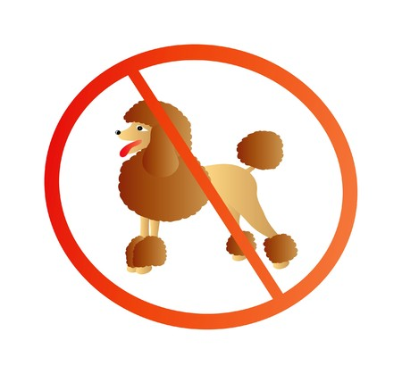 nice illustration - poodle in sign isolated on white background Vector