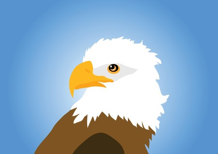 eagle isolated on blue background Vector