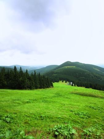 krkonose: Krkonose - National park in Czech republic, green fields in mountains Stock Photo