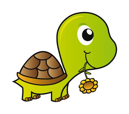 turtle isolated: Ilustraci�n agradable - verde tortuga j�venes aislado sobre fondo blanco  Vectores