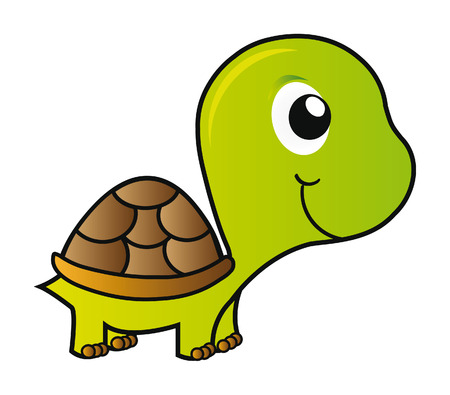nice illustration - green young turtle isolated on white background Vector